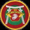 Marine Logistics Group 3 (MLG-3)